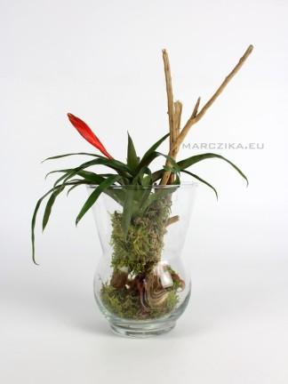 Kompozíció üveg vázában